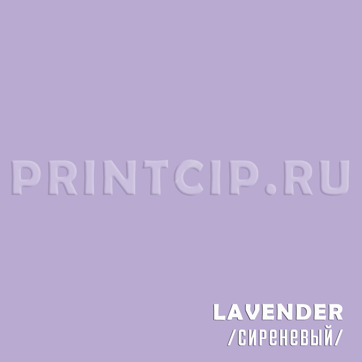 lavender colorplan